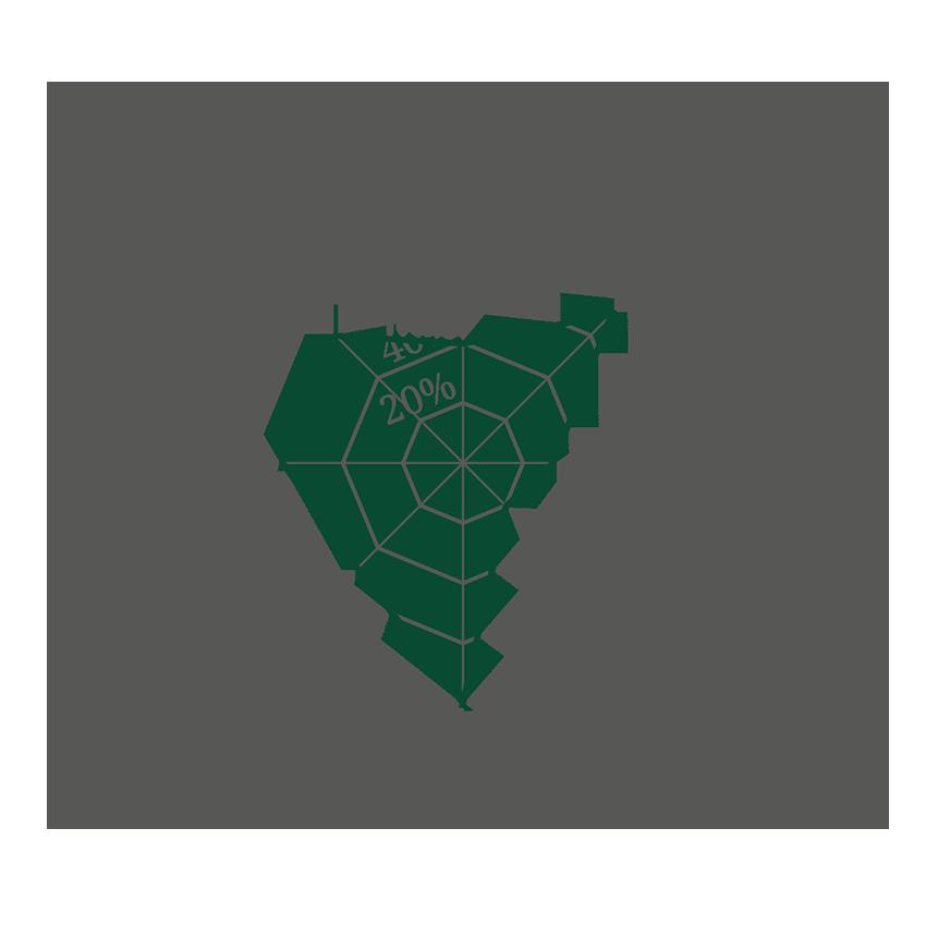 spinnennetzdiagram_dunkel