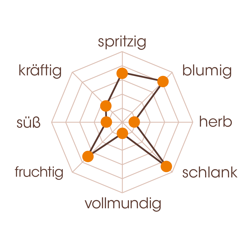 Spinnennetz diagram_Schoarma Summa