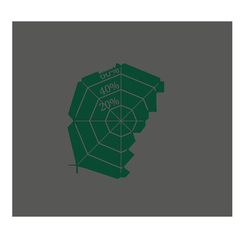 Spinnennetz diagram_Weißbier